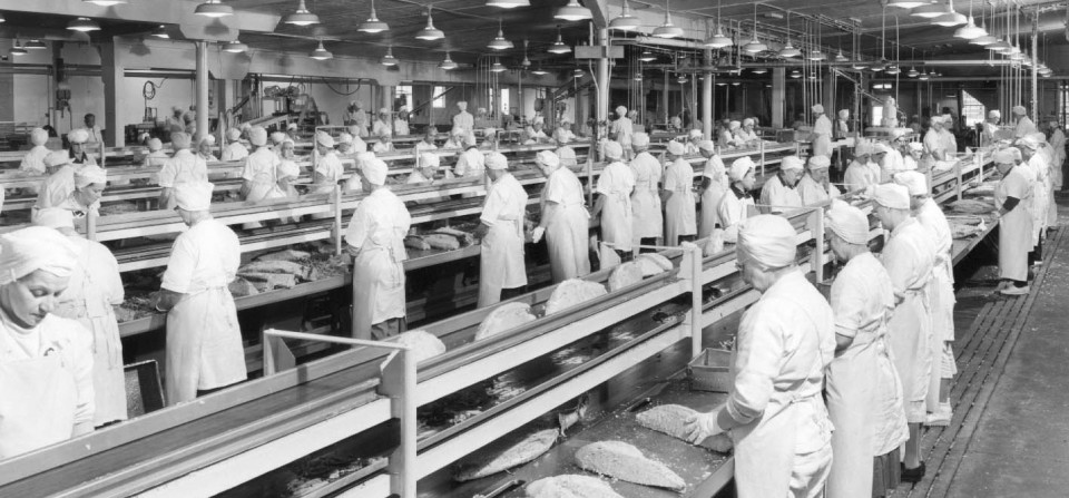 Cannery Workers